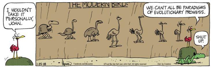 march05 BC evolution