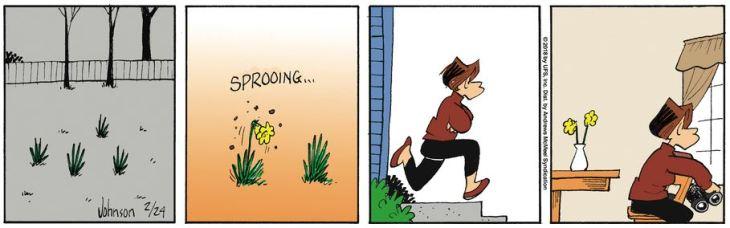 arlo flowers chak