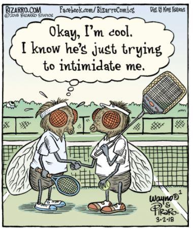 biarro wayno tennis