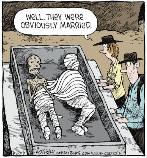 speed bump coverly mummies