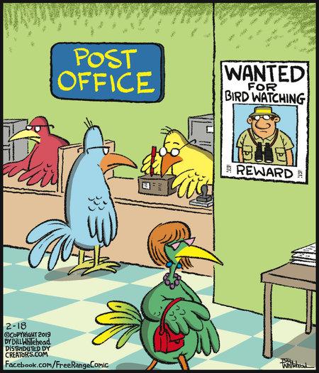 avian crime-chronicity