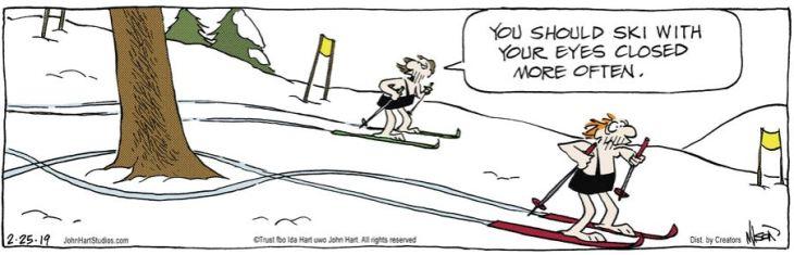 ski why