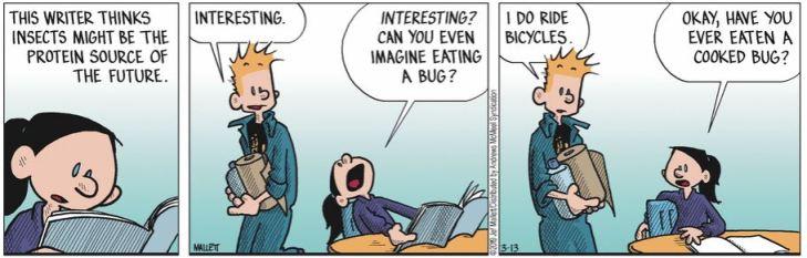 bug frazz