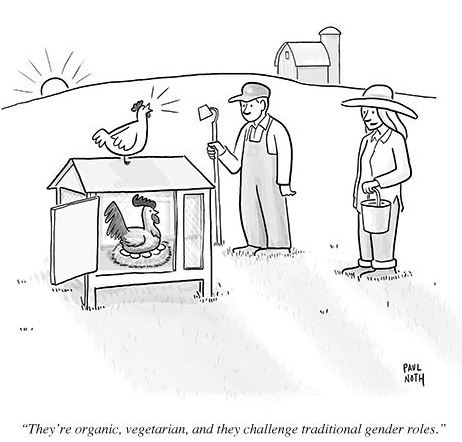 Paul noth chicken rooster