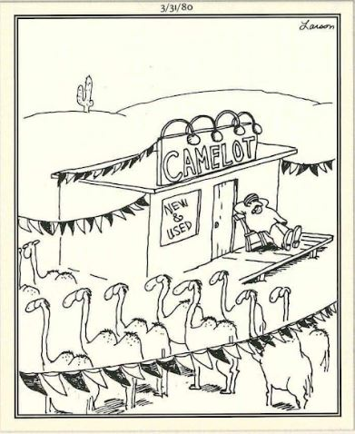 nov 9 oy far side