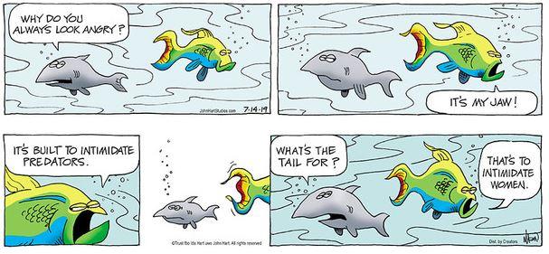Dec11 BC fish.JPG