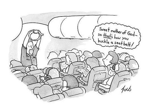 NYer seatbelt