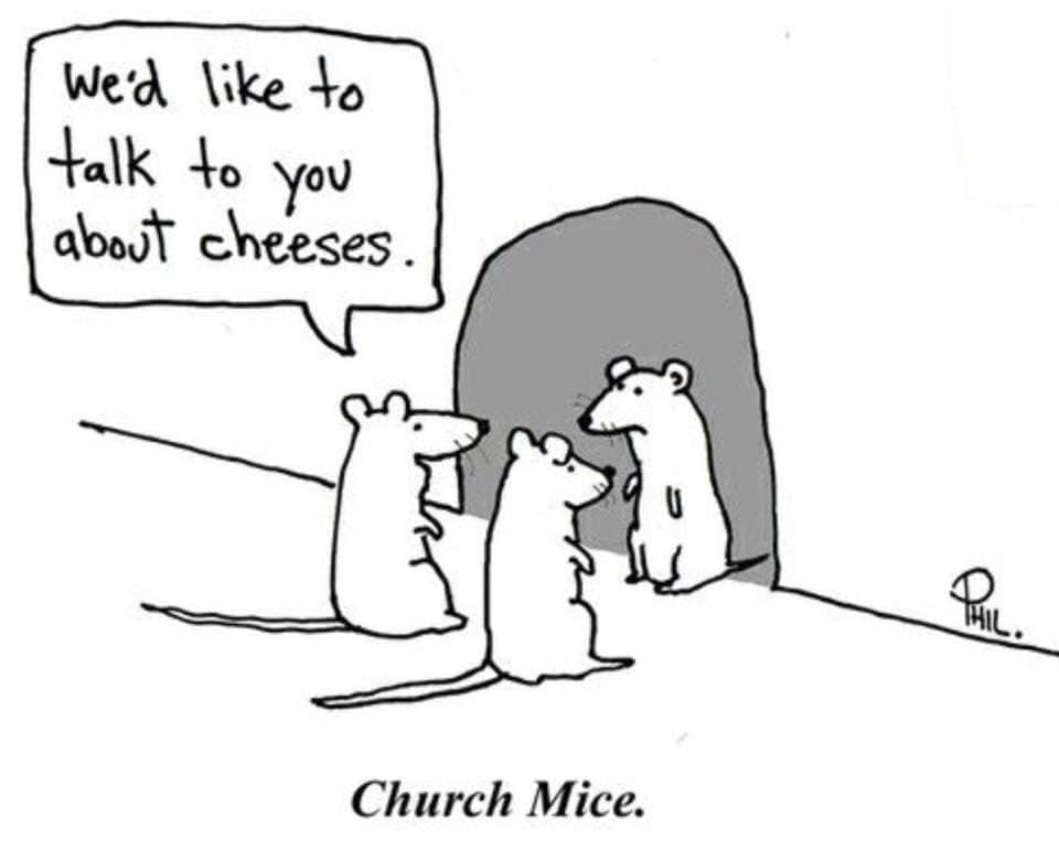 jan 4 oy mice