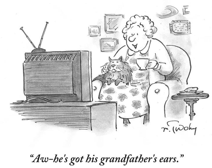 jan15 hes-got-his-grandfathers-ears-mike-twohy.jpg