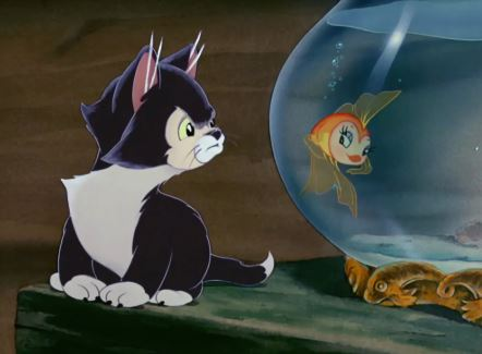 cat and fish pinocchio