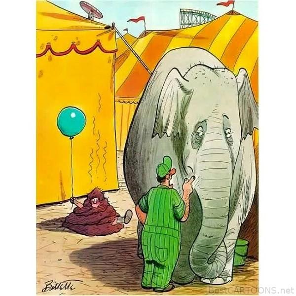 feb 15 elephant ewww