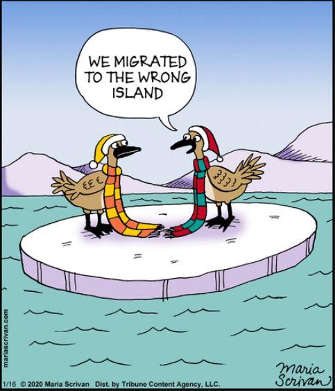 Feb24 half migration