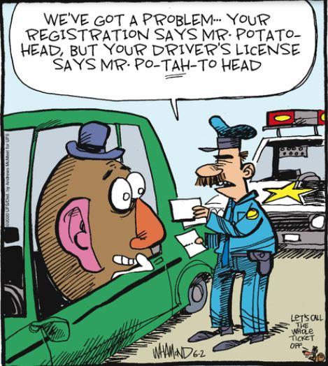 reality potato Andrea