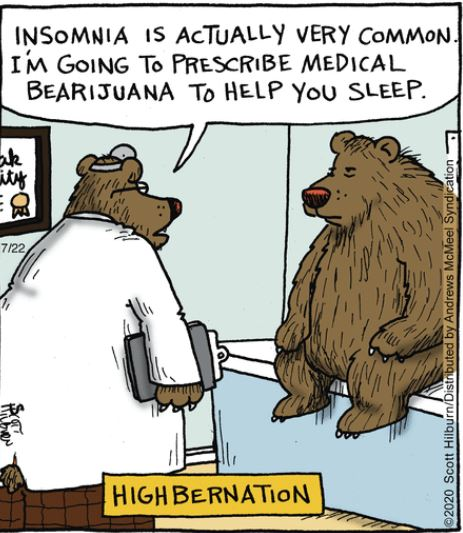 aug 8 andrea bear